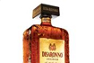 Disaronno's Open the Possibilities